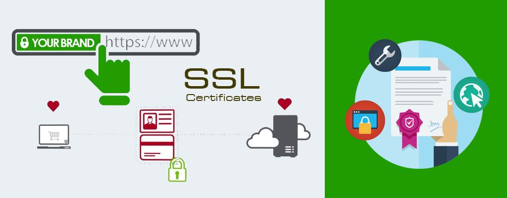 Secured SSL Certificates Service Provider In Chennai